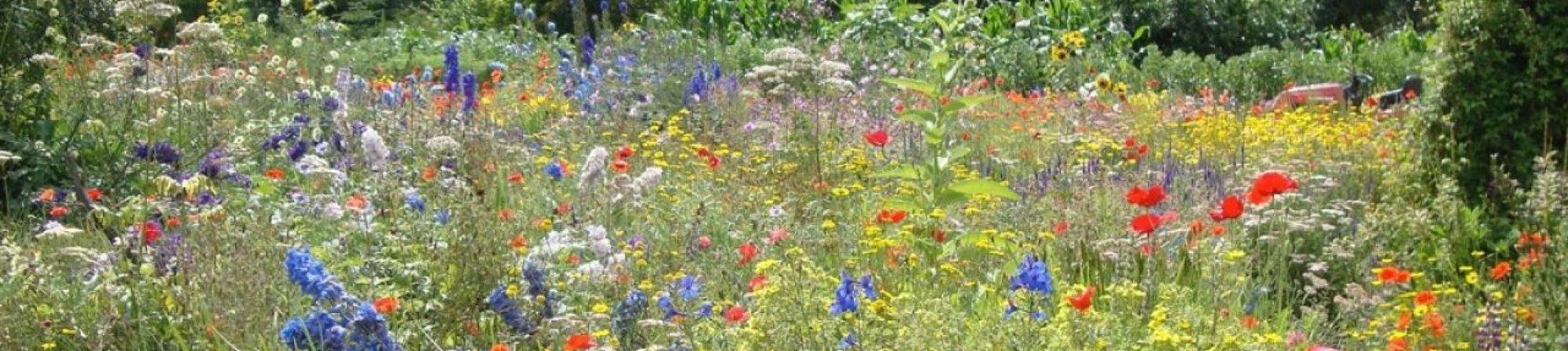 Strathcona County Garden Club